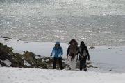 Chabrouh Faraya Snowshoeing with Vamos Todos
