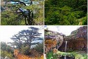 Arez Tannourine-Balaa Hike with Wild Adventures