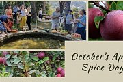 October's Apple Spice Day