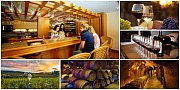 Beqaa Wine Tasting Tour with Zingy Ride