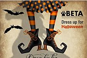 "BETA's Halloween ""Boos and Booze"" Party to Support Animal Welfare in Lebanon"