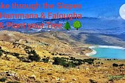 Hike The Slopes of Hammana & Falougha & Plant Your Tree with Green Steps