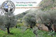 Footprints Hike to Save Marj Bisri (organized by Footprints)