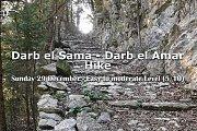 Darb el Sama & Darb el Amar with YOLO