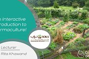 An Interactive Introduction to Permaculture
