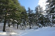 Darb EL-Mahabess Hike/Snow Hike with Wild Adventures