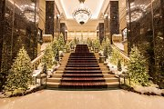 Festive Season at Phoenicia Hotel, NYE